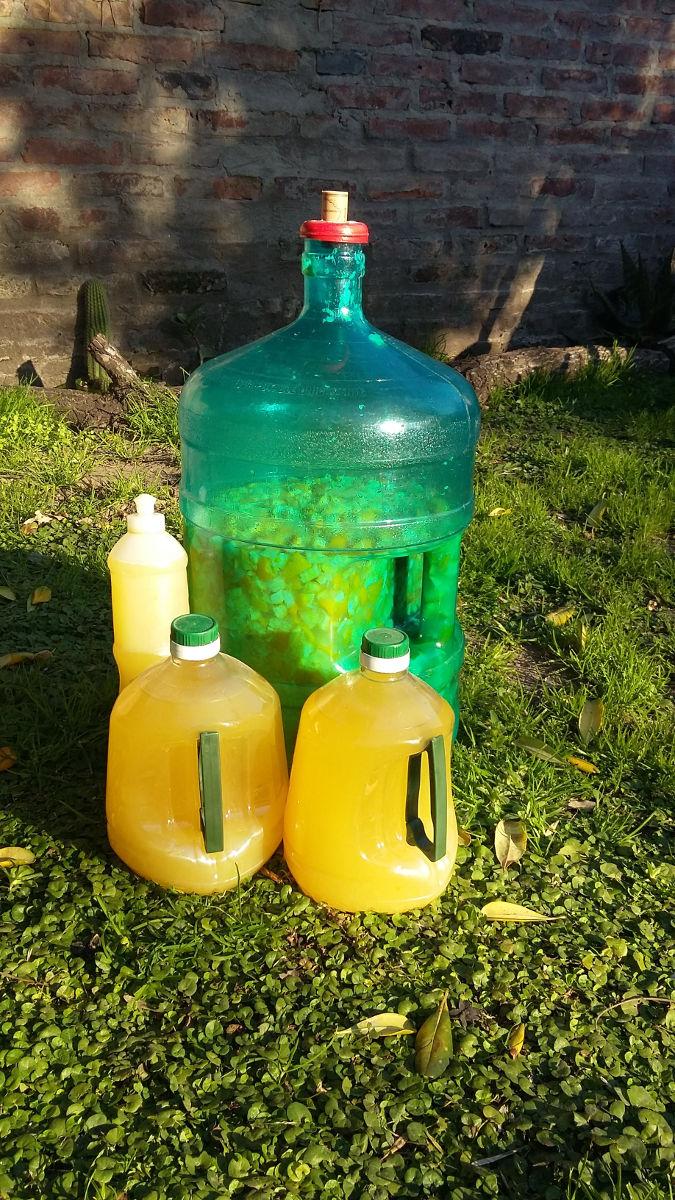 Producción de detergente ecológico de naranjas