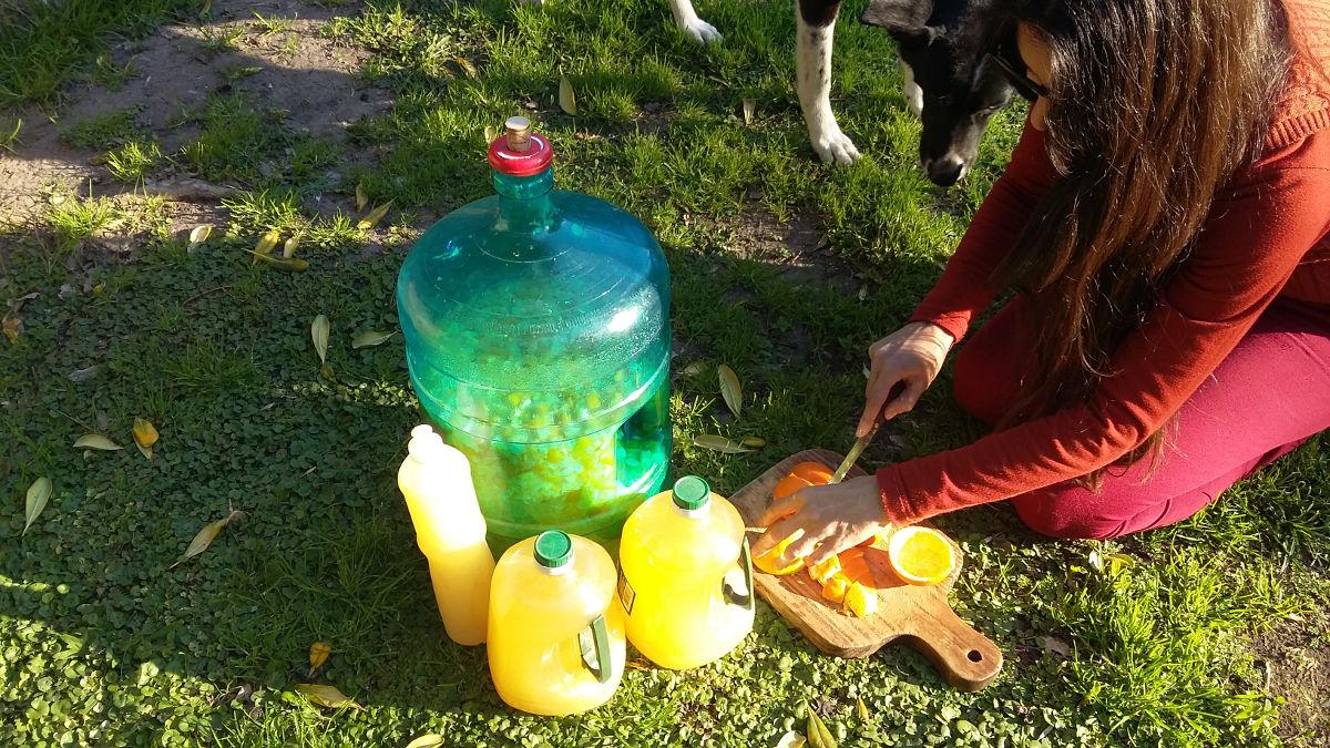 Preparación del detergente ecológico de naranjas